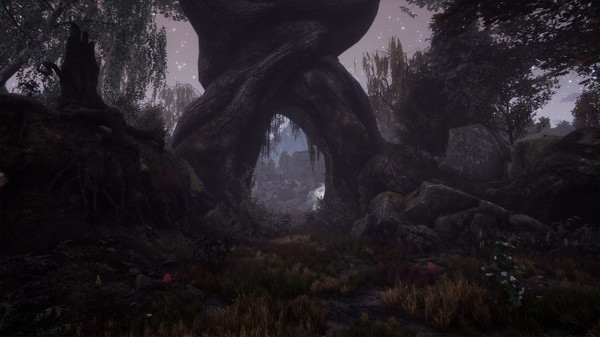 The Dead Tree of Ranchiuna Free Download